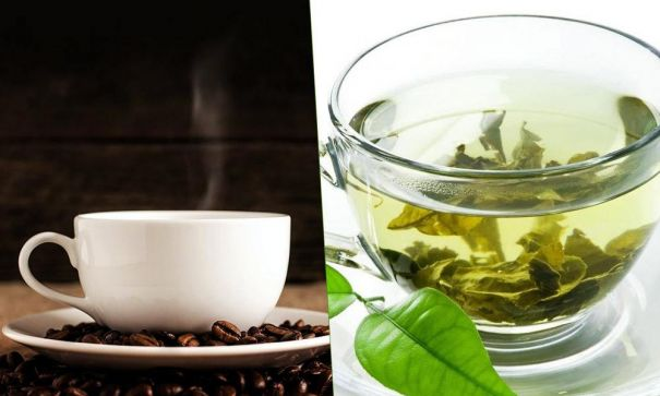 Green Tea vs Coffee – What are the pros and cons of both drinks - MevoFit Blog | mevofit.com - 2