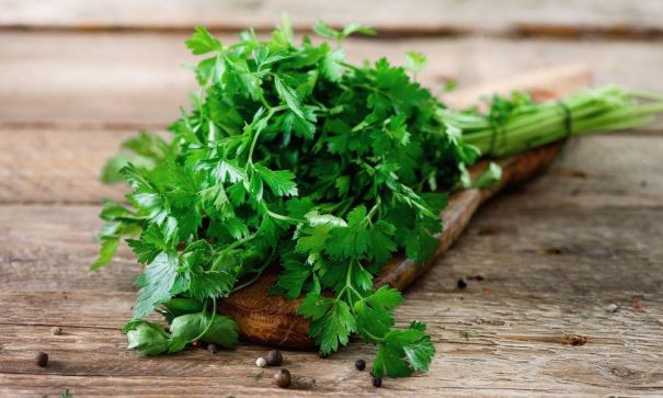 How-does-Parsley-help-in-shedding-pounds