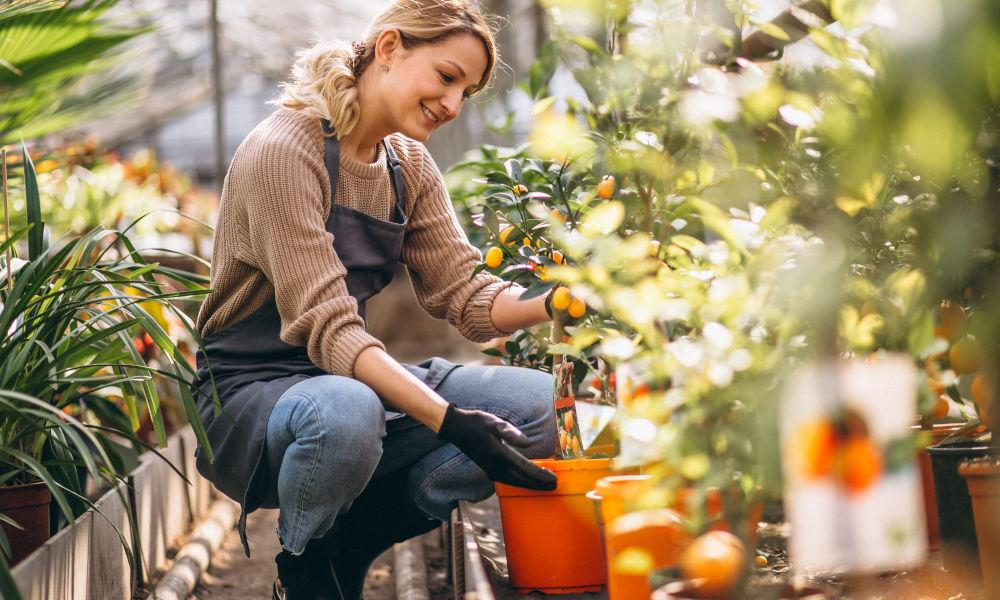 Cultivate a garden for yourself