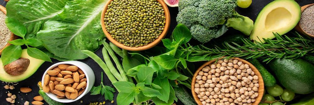 High Protein Vegetarian Foods for Weight Loss