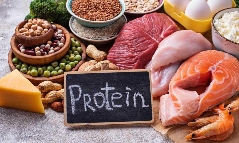 Protein diet for leaner muscles