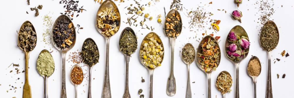 What Ingredients, Herbs, & Nutritious Values to find in a Premium Green Tea - 3